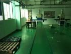 生产线 PVC输送线 工业流水线 喷油线 包装流水线