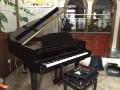 北京钢琴调音师电话 - 调音 调律,包您满意