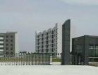 事宜中型项目南沙湾工业区地皮与厂房