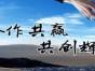 广西南宁到四川攀枝花货运专线 时效快捷