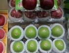 一站式蔬菜水果、干货调料、冻货肉类专业配送
