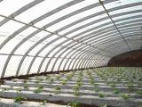 五层共挤EVA农膜供应商|三层EVA长寿流滴膜供应商