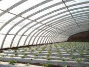 河南五层共挤EVA农膜 特价五层共挤EVA农膜就在文友农膜