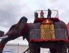 机械大象蜂巢迷宫雨屋设备vr体验设备出租