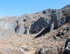 景超旅游网.红花山岩画