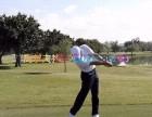 高尔夫球快速入门课程 3998元起 可预约体验