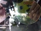 温江汽车挡风玻璃修复中心
