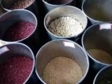 广州市绿康达农副产品有限公司,一家专业致力于广州食材配送、黄