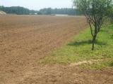400亩红土地