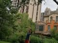 香河 香河大运河孔雀城 2室 1厅 92平米 整租