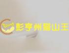 猫山王榴莲甜品加盟
