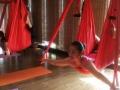 专业的瑜伽/肚皮舞/爵士舞/空中瑜伽教练培训开班了