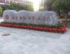 天津花卉租赁公司 天津绿植租赁公司 天津植物租摆公司