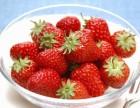 盘锦市兴隆台草莓采摘园