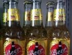 青岛劲派啤酒招商加盟 夜场啤酒 流通啤酒 品种齐全