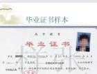 北京外国语大学远程网络大学招生简介