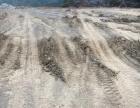 汇川周边 泥海路旁 土地 13000平米