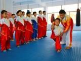 苏州市少儿武术培训,高新区汇金科创中心武术培训