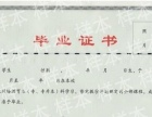 宁大自考、中南大学、陕师大、东北财经、电子科技大、四川农大网