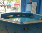 济南室内儿童水上乐园设计施工,婴幼儿水育设备安装