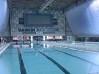张江性价比较高的游泳女教练老师私教一对一小班
