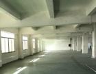 带独立货梯整层厂房1400平 分租560平800平