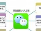 网络维护、网站建设及推广、app软件开发