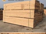 保定木方价格 建筑工程桥梁隧道土建工地支模用木材板材
