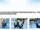 海陆空动物展览出租供应活体企鹅海狮表演