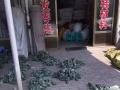 诚信棉鞋材料批发零售 鞋