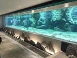 定做大型鱼缸 洋清水族 定做大型鱼缸亚克力