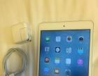 苹果ipad mini1