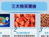 森森血鹦鹉鱼饲料增红热带观赏鱼发财鱼增色鱼食增艳鱼粮