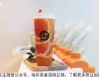 茶饮加盟品牌,海岸茶度美味的诱惑