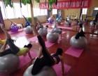 焦作蒂梵瑜伽总店 1月23日-24日大球瑜伽培训