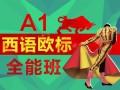 上海商务西班牙语培训 商务西班牙语精英课程