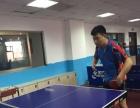 王教练乒乓球一对一训练