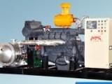 耐普特10Kw沼气发电机的价格
