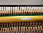 英昌高端工艺概念专业琴 限量版 产量极少