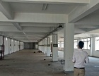 新阳工业区 阳光路 独门独院标准厂房 8000平米