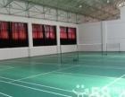 乒乓球地胶 乒乓球地胶品牌 天津乒乓球地胶乒乓球