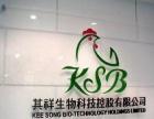 门面招牌公司形象墙设计发光字广告制作水晶字KT板
