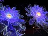 伊春大型灯光展出租 梦幻灯光节整套出售 灯光艺术制作
