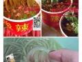 深圳学铁板鱿鱼。臭豆腐。肠粉。酱香饼。油条。酸辣粉