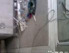 专业水电安装,价格优,持【中级电工证】