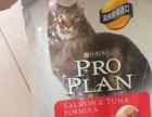出售纯进口澳洲冠能猫粮