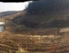 (null) 山沟沟 厂房 100000平米 五亩多地出
