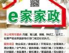 徐州丰县保洁公司