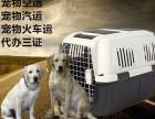 上海至全国宠物托运服务可办理随机和单独托运电话