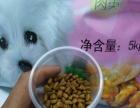 大量批发全新猫粮狗粮价格85元10kg